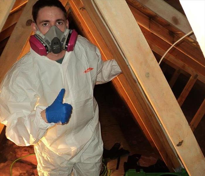 Checking Attic for Water Damage