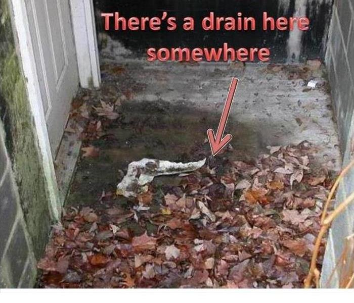 A drain outside a back door to a house that it covered in leaves